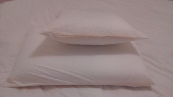 oreiller rectangulaire eve memoire de forme