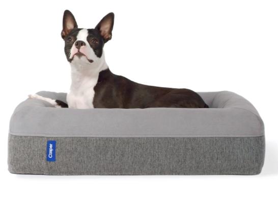 lit pour chiens free moment de choisir le lit pour chien sur un comparateur de prix sachez que. Black Bedroom Furniture Sets. Home Design Ideas
