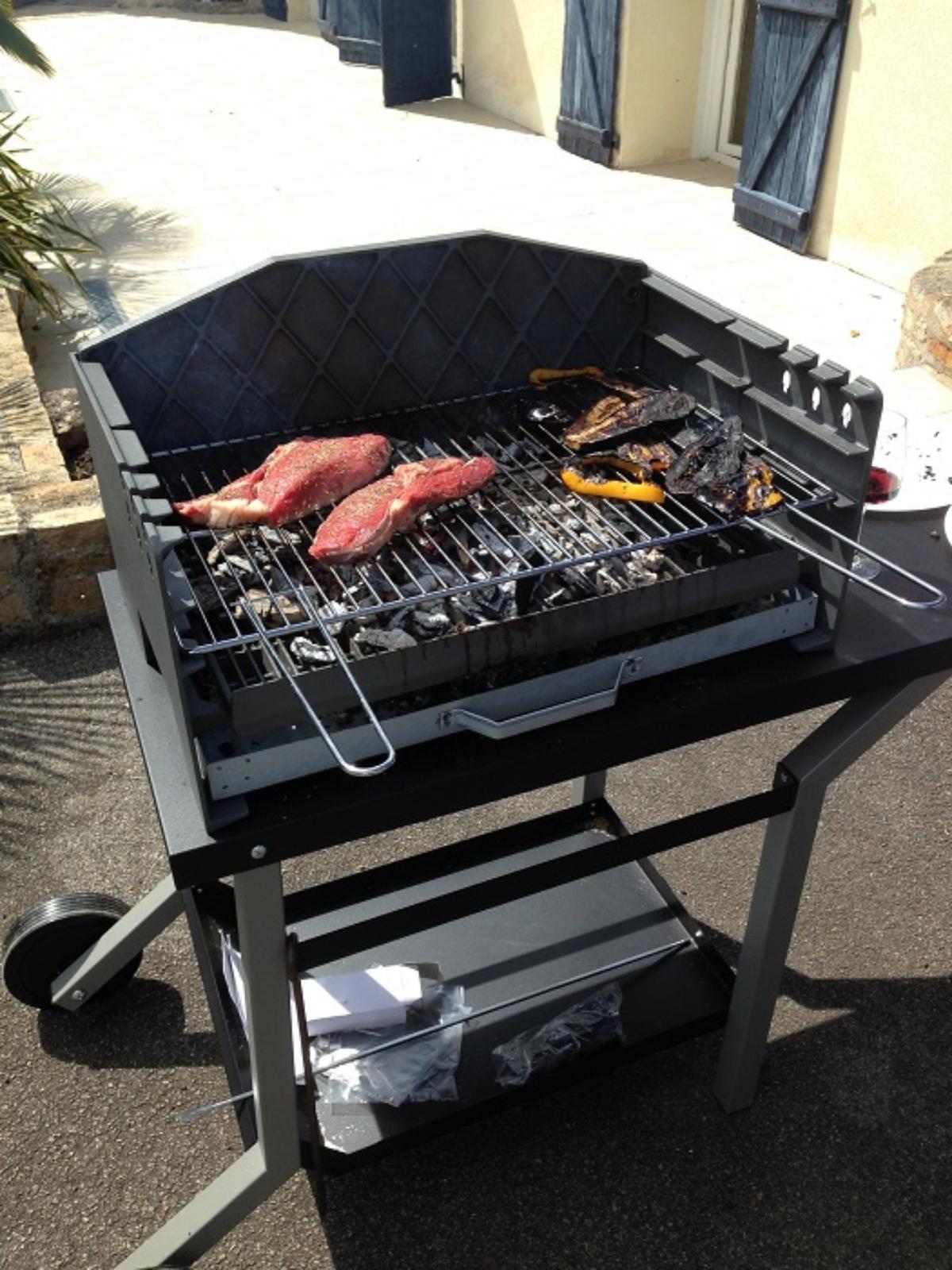 Barbecue Ou Plancha Que Choisir comment vraiment bien choisir mon barbecue en 2018 chef ?
